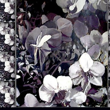 black white orchid by lynnGrayson