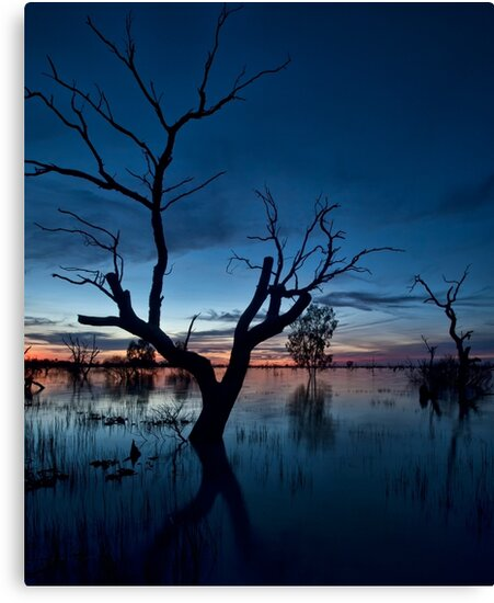 Sunset on the Lake - Menindee, NSW by Malcolm Katon