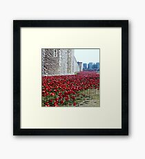 Sea of poppies -Tower of London Framed Print