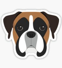 Boxer Dog Portrait Illustration Sticker