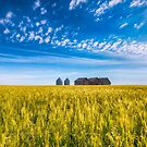 Summer On The Prairies by IanMcGregor