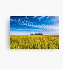 Summer On The Prairies Canvas Print
