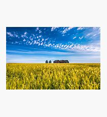Summer On The Prairies Photographic Print