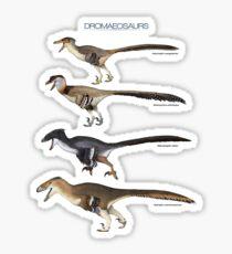 Dromaeosaurs Sticker