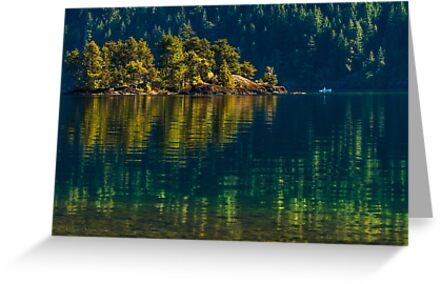 SERENE REFLECTIONS by Sandy Hill