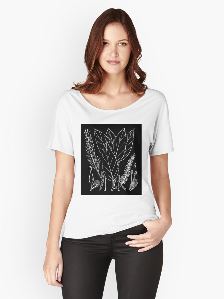 Britton And Brown Illustrated flora of the northern states and Canada 1310 Salix myricoides  Women's Relaxed Fit T-Shirt Front