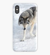 Winter Wolf Walk _ Timber Wolf iPhone Case/Skin