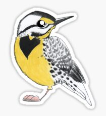 Meadowlark Sticker