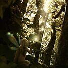 Faerie Light Magic by Melanie Moor
