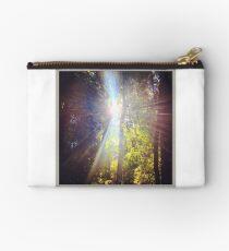 Sun Beam Trees Studio Pouch
