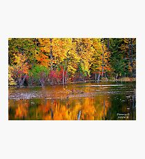 """Reflected Fall"" Photographic Print"