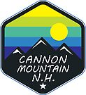 SKIING CANNON MOUNTAIN HEW HAMPSHIRE CLIMBING HIKING SKI by MyHandmadeSigns