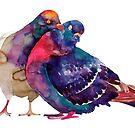 Pigeons by Maja Wrońska