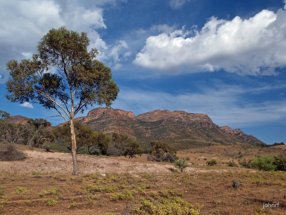 Wilpena Pound South Australia by johnrf