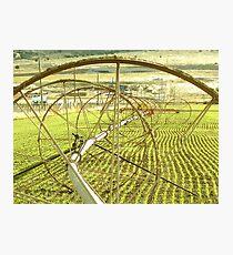 Sprinklers - Complex  Photographic Print