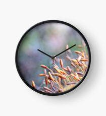 Lichen Party Clock