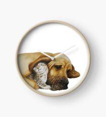 Reloj Mejores amigos - Bloodhound & gatito