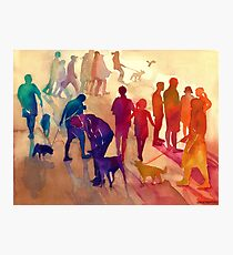 Dogs on the walk Photographic Print