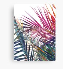 The jungle vol 1 Canvas Print