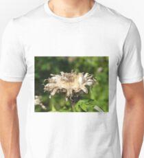 Past It's Prime T-Shirt