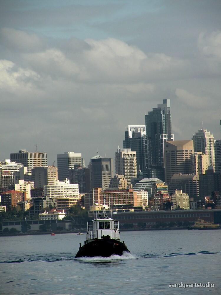 Sydney Harbour New South Wales Australia by sandysartstudio