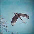 Nesting Heron von Peggy Collins