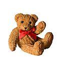 Teddy Bear by flashcompact