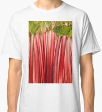 Rhubarb full rose red background. Rheum. Macro Classic T-Shirt