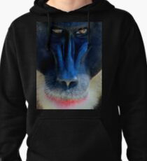 monkey looking right Pullover Hoodie