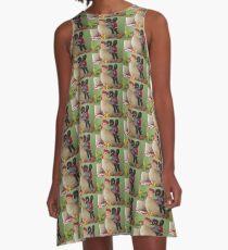Gollies riding a Chicken A-Line Dress