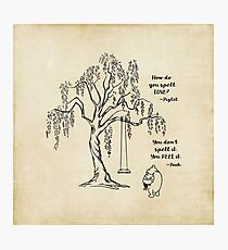 Winnie the Pooh - Friends Forever Photographic Print