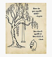 Winnie the Pooh - How do you Spell Love? Photographic Print