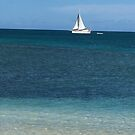 Sailboat in Antigua 2 by Christine  Wilson