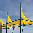 Yellow Sails by Gavin Kerslake