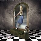 Through the looking glass by Kim Slater