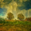 Approaching Storm At Antietam by Lois  Bryan