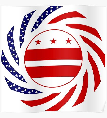 DC Murican Patriot Flag Series Poster