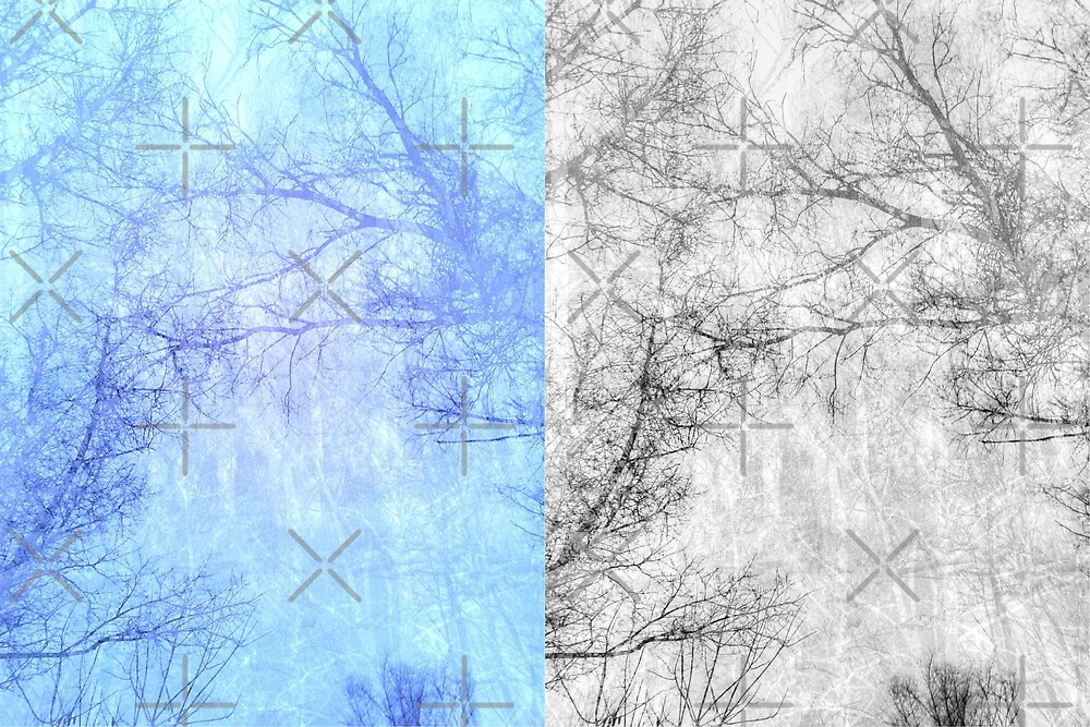 Bare trees branches 2 by AnnArtshock
