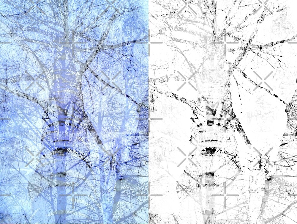 Bare trees branches 3 by AnnArtshock