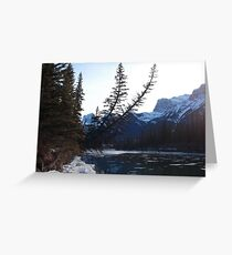 Trees over river Greeting Card