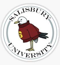 Salisbury University Sammy die Möwe in einem Pullover Sticker