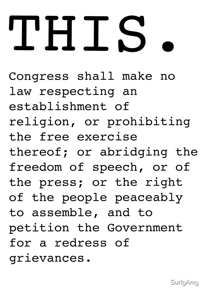 This. The First Amendment  by SurlyAmy