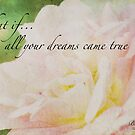 Dreams by Betty MacRae