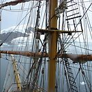 in the rigging! by poohsmate