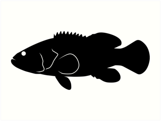 Goliath Grouper Fish Silhouette Black Art Prints by