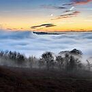 River of Fog by Cat Perkinton