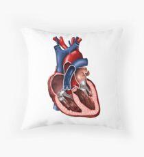 Cross section of human heart. Throw Pillow