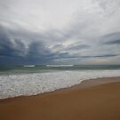 beach at Dolphin Sands, Tasmania by gaylene