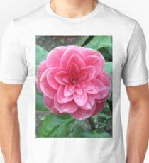 Camellia japonica Unisex T-Shirt