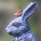 Wren on White Rabbit by Richard Ion